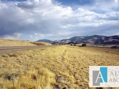 Deslindes de terrenos e información catastral