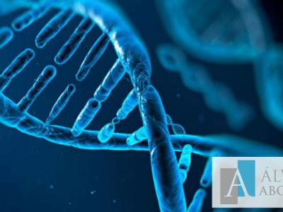 Prueba de ADN al padre biológico