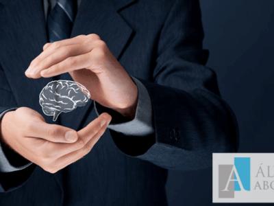 Modificación Ley Propiedad Intelectual