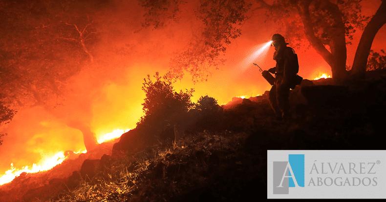 Delito de incendios en Canarias